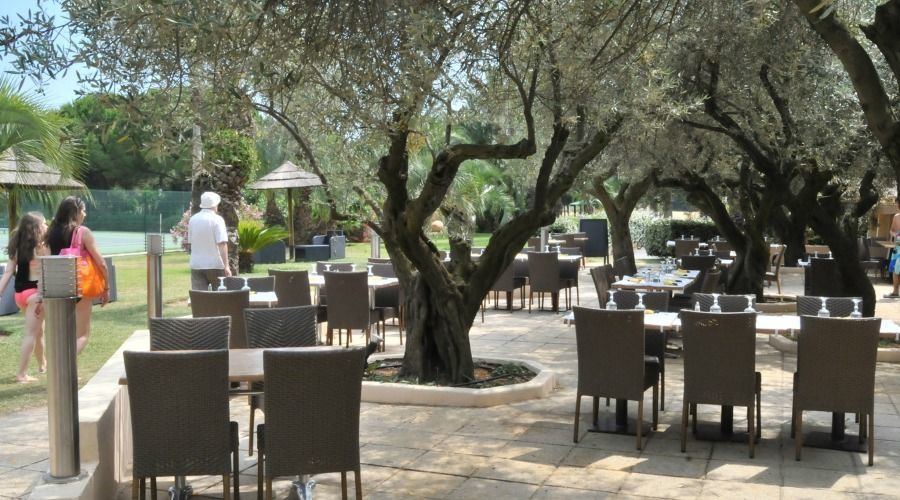 The 4-star Etoile d'Argens Ecolodge Camping-site – Restaurant Patio